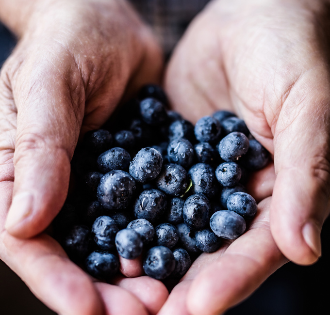Blueberries and Warfarin